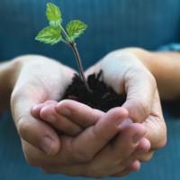 Sustainability Working Group
