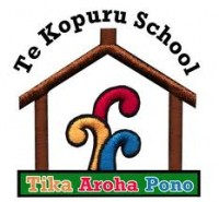 Te Kopuru School
