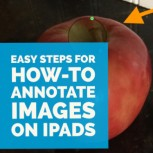 Annotate Images