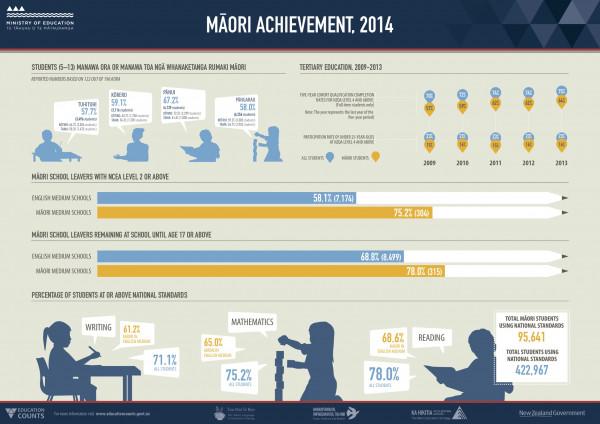 Māori achievement profile