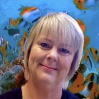 Sue Halsey