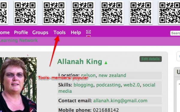 Virtual Learning Network_ Allanah King